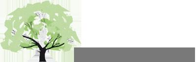 Logo Praxis für klassische Homöopathie Ruth Bucher